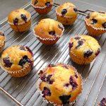 Muffins aux mûres et aux myrtilles